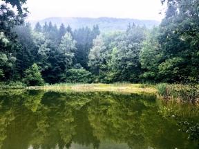 Boyana Lake, Vitosha