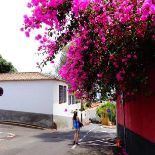 Funchal_2